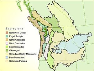 Ecoregional Map