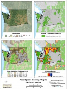 Model outputs from statewide analysis for elk.  2010